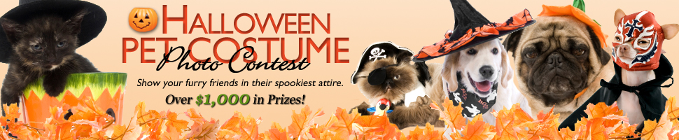 The 2009 Halloween Pet Contest is here!
