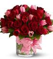 Red, Pink, Lavendar Roses