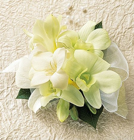 Roswell prom corsage carithers flowers white dendrobium orchid corsage mightylinksfo
