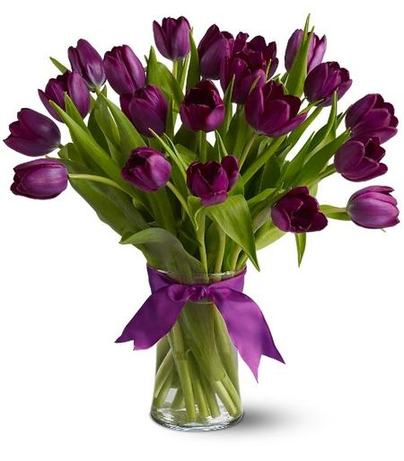[Image: purple-tulips.jpg]