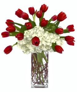 zoom_TulipsandHydrangeaChristmas813120284335